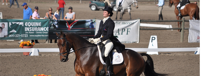 Dressage ping